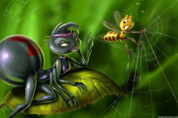 Image result for spider bee
