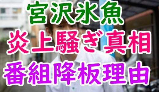 宮沢氷魚(ひお)の炎上や番組降板理由は?性格悪くても桜井日奈子と熱愛ってマジ?