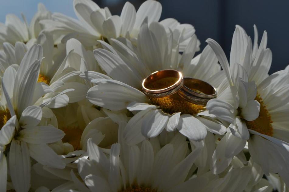 Ромашковая свадьба картинки прикольные