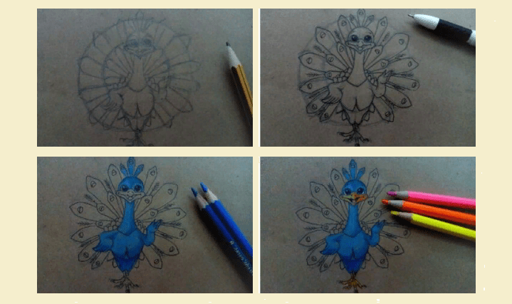 Instruction how to draw a peacock