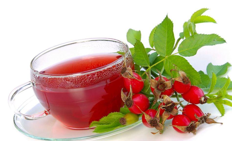 Можно ли есть клюкву при подагре? Какие ягоды можно при подагре: клюква, брусника, вишня, облепиха, калина, шиповник