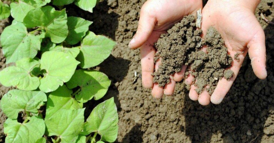 制备锅和土壤加工
