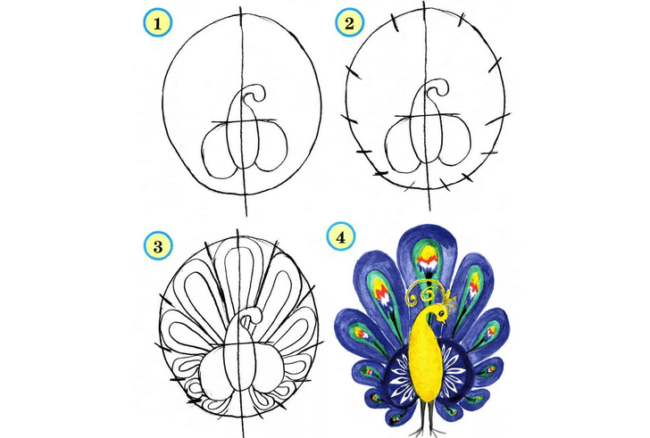 Peacock: Pictures drawn to draw