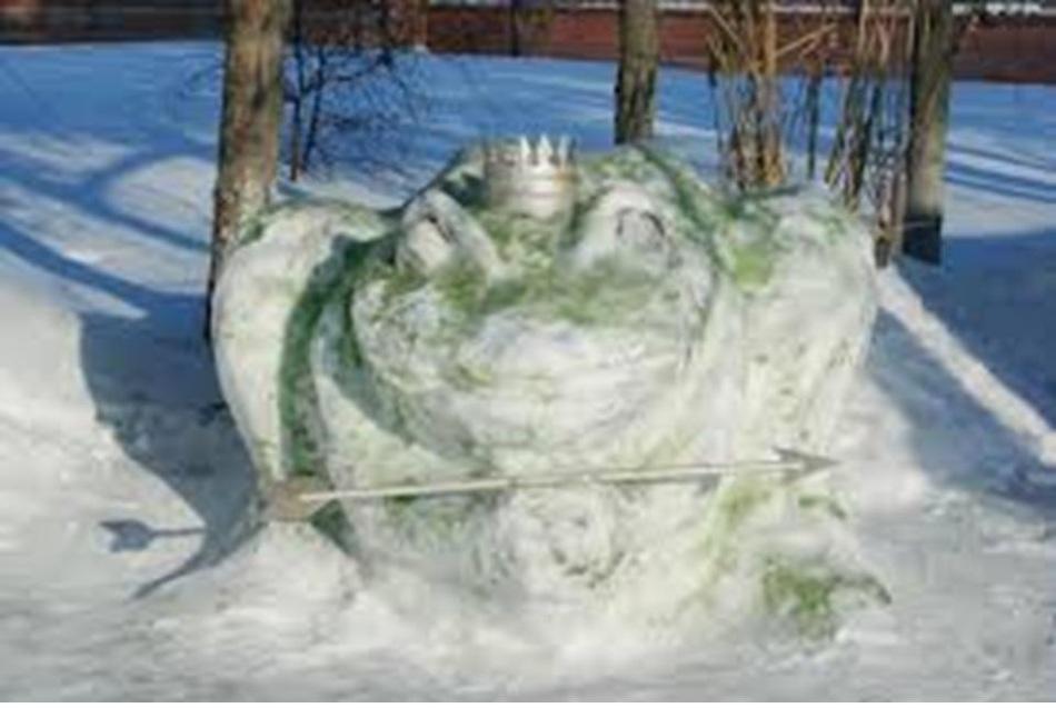 大雪青蛙在森林里