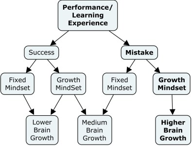 Mindset profoundly affects our brain growth. Mistakes with a growth mindset cause the most growth.
