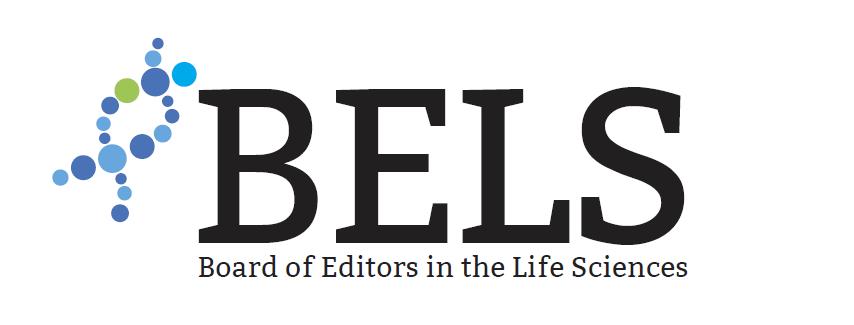 Logo 1B