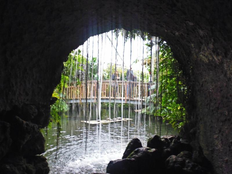 wyspa kwiatów - wodospad
