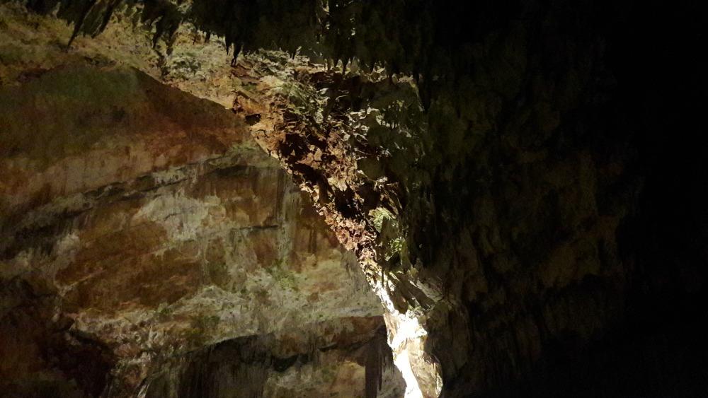 Jaskinia Postojna w Słowenii - wnętrze jaskini