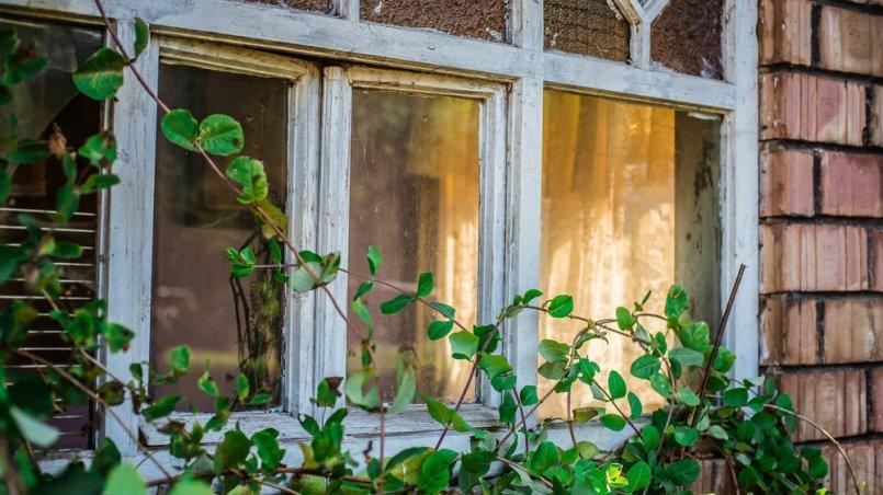 nie myję okien w Święta Wielkanocne