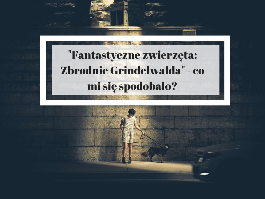 Fantastyczne Zwierzęta Zbrodnie Grindelwalda - co mi się spodobało - recenzja