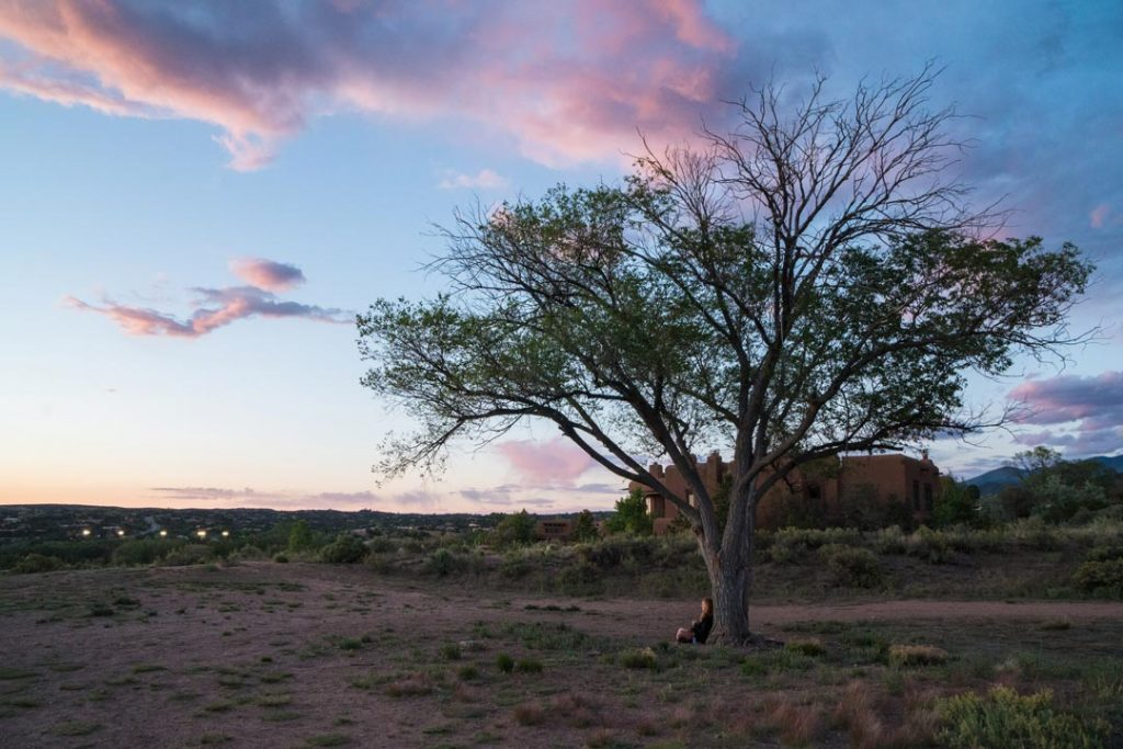 Santa Fe New Mexico Sunset with large tree and adobe building