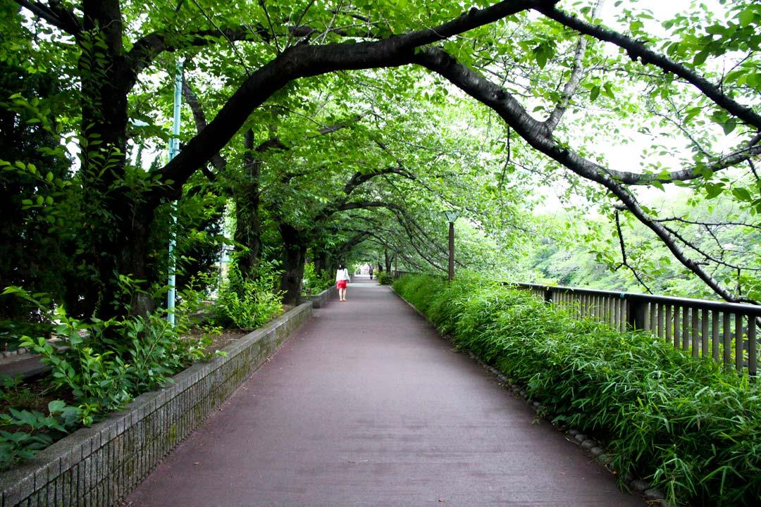 Tokyo Riverwalk