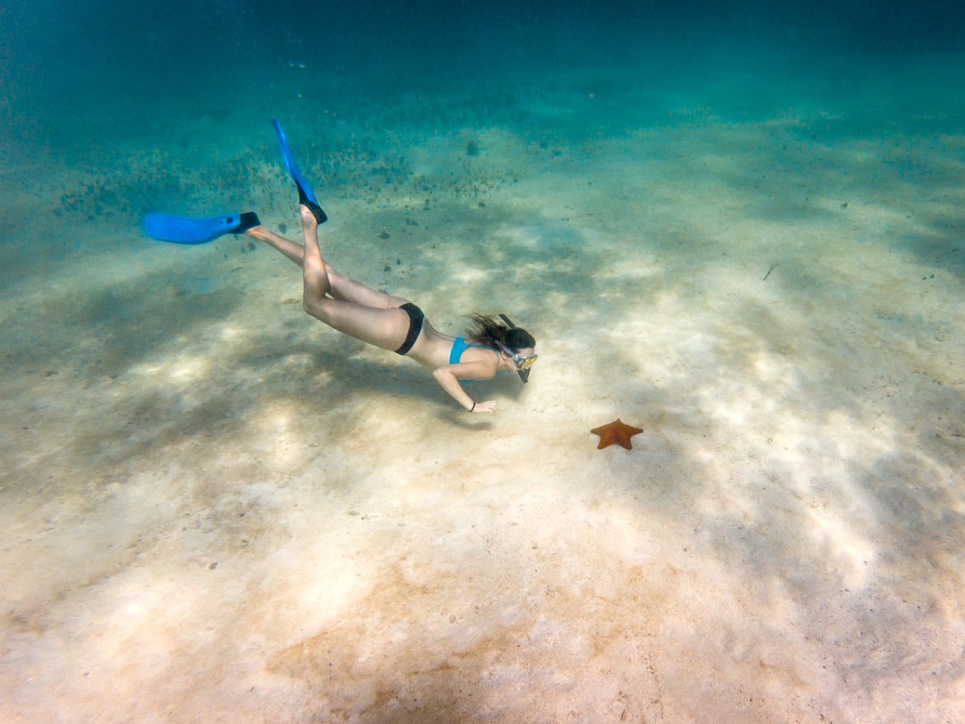 Woman freediving looking at a starfish