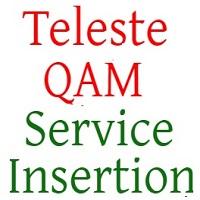 New Service Insertion Teleste QAM