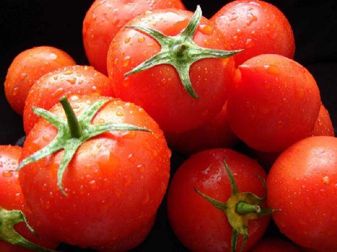 tomati8_result