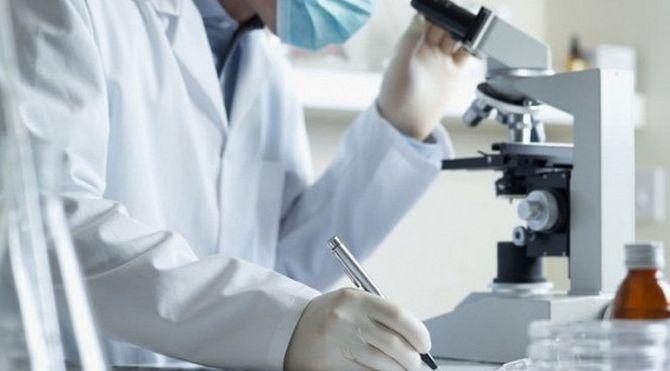 Действие популярных антиоксидантов могут иметь полностью обратный эффект