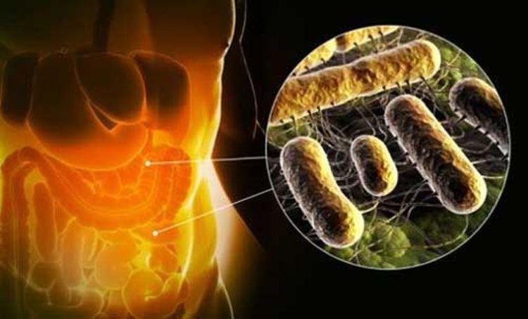 Эти признаки точно укажут на то, что ваш кишечник переполнен токсинами