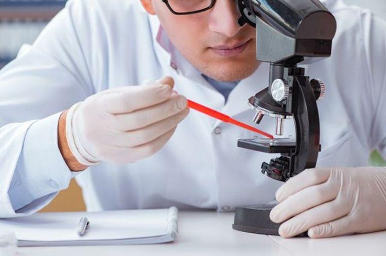 Какие болезни можно вычислить с помощью обычного анализа крови
