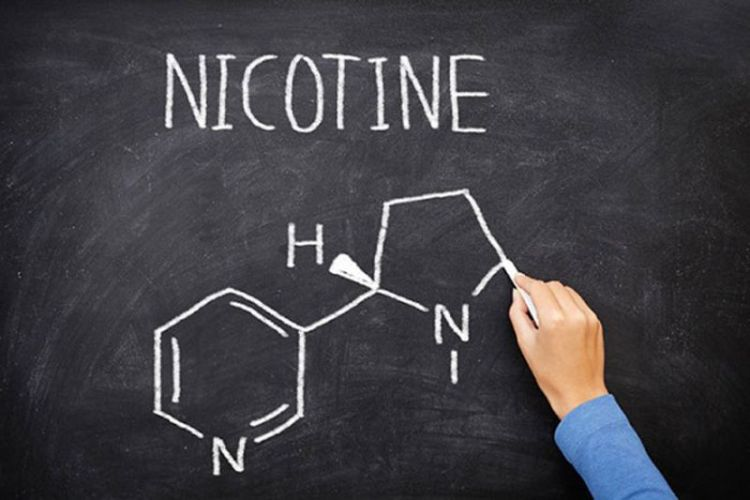 Ученые выяснили, как больным шизофренией может помочь никотиновая зависимость