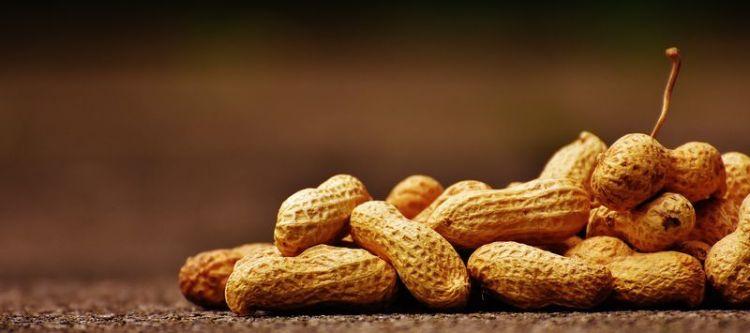 Эксперименты показали, что благодаря этому ореху ваши артерии могут стать намного эластичнее