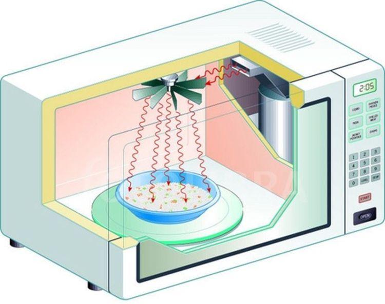 Микроволны разрушающие: 8 продуктов, которые ни в коем случае не рекомендуется разогревать в микроволновке
