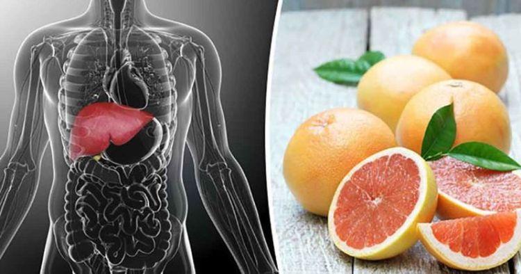 Перезагрузка печени: 12 способов улучшить здоровье естественного фильтра человека