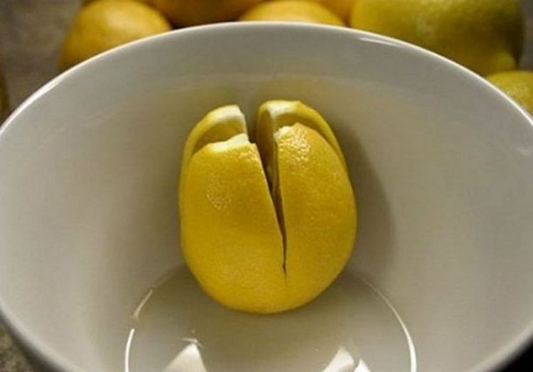 Разрезанный лимон в комнате как лекарство от легочных недугов: необычные свойства обычного фрукта