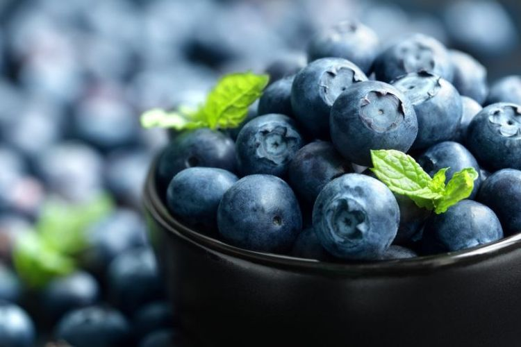 Определение антиоксидантов, их польза для организма