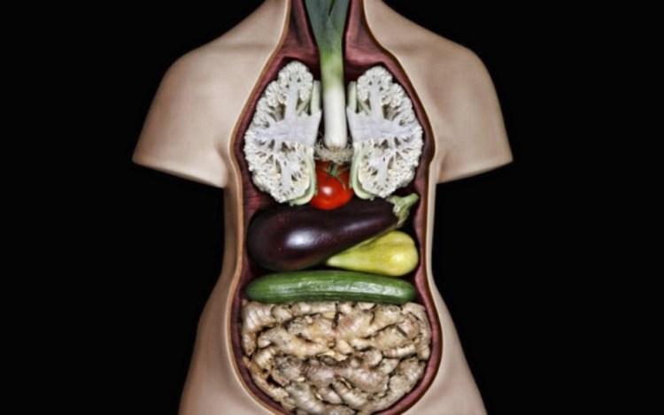 Форма и вид продуктов питания указывает на то, какой орган они способны излечить