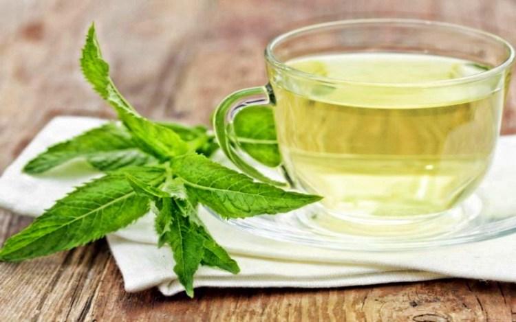 Вместо кофе по утрам: 9 целительных свойств чая из перечной мяты