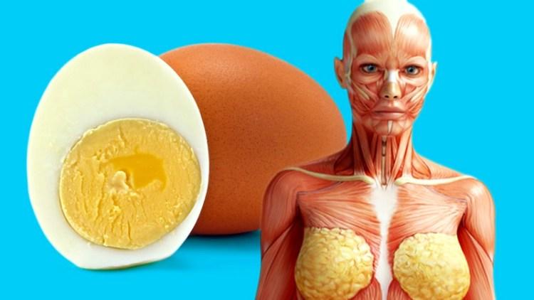Что приятного случится со здоровьем, если каждый день кушать по 2 яйца