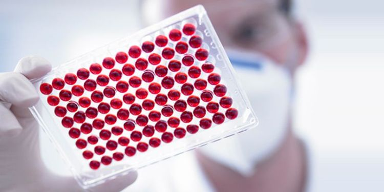 Аллергия на глистов: причины и методы лечения неприятного недуга