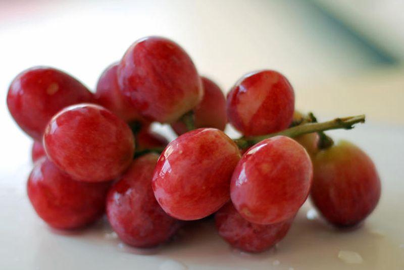 Красный виноград при раке поджелудочной железы
