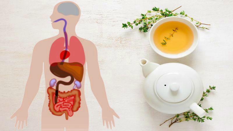 Народный напиток от рака, инсульта, ожирения и диабета: 10 полезных свойств зеленого чая