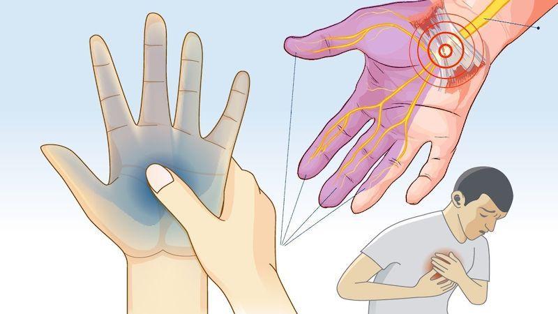 Отечность, болит сердце и немеют конечности: 8 тревожных сигналов недостатка калия в организме