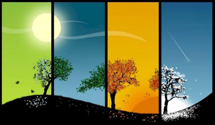 Осенний или весенний: тест определит, к какому типу гениев вас можно отнести