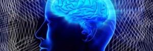 Тест на IQ: лишь 4 человека из 100 могут ответить правильно на все 10 вопросов