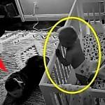 Камера записала, что же такого происходит ночью в комнате с ребенком и собакой