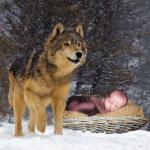 Девушка отдала новорожденного ребенка волчице, и в ней оказалось больше человечности, чем в людях