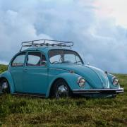 retro powder blue volkswagen beetle in field