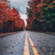 thanksgiving break driving