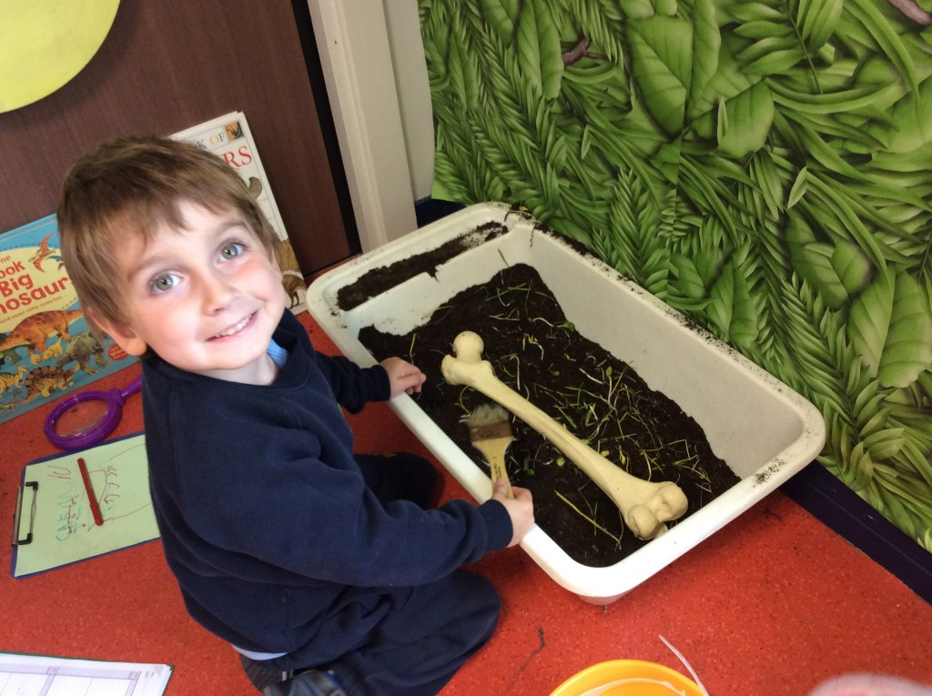 Nursery pupil unearths a plaster dinosaur bone