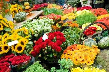 Top 10 Flowers For Small Growers Headstart Publishing