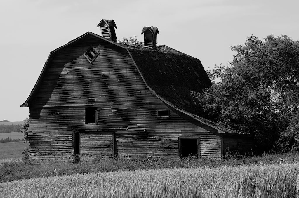 Black-and-White-Barn