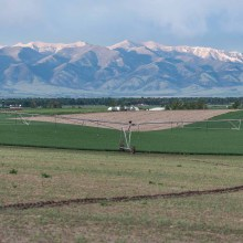 Agriculture in the Gallatin Valley