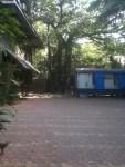 Water tank amongst trees