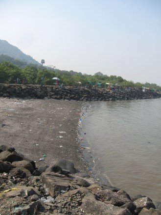 I only saw streams at a glance, and most have been piped under in urban Mumbai. Hopefully this small beach at Elephanta Island will give you a notion of water quality issues.
