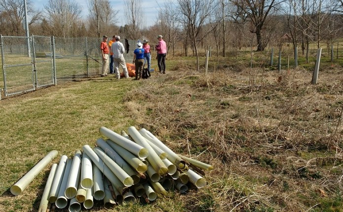 End of work gathering near a pile of collected empty tree tubes.