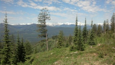 Near the top of RIchmond peak. I began to feel a small amount of tenderness in my achilles on the descent to Seeley Lake. I did not go off route and continued to Ovando.