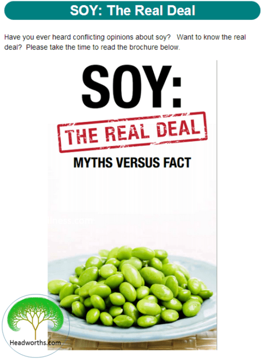 SOY_-_THE_REAL_DEAL